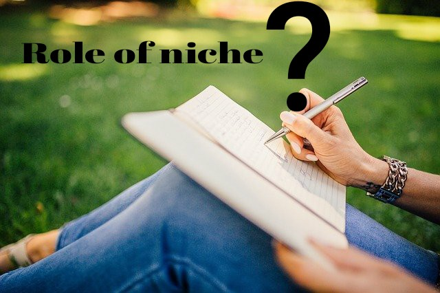 role of niche in blogging